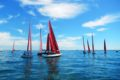 Redwing Summer Sailing 2016